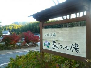 44733_54_kikakyushu_ajisai1